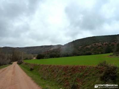 Cañón Caracena; Encina  Valderromán; navafria castillo de viñuelas barrancas de burujon valsain